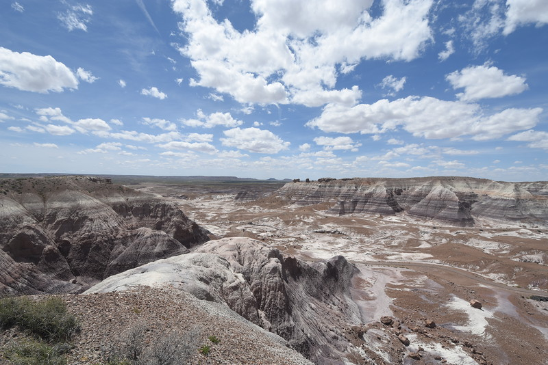Petrified Forest National Park, AZ, USA