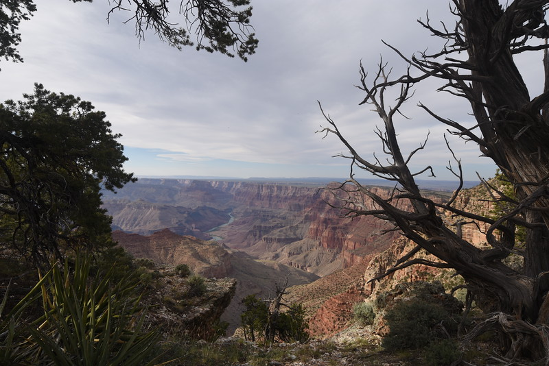 South Rim, Grand Canyon National Park, AZ, USA