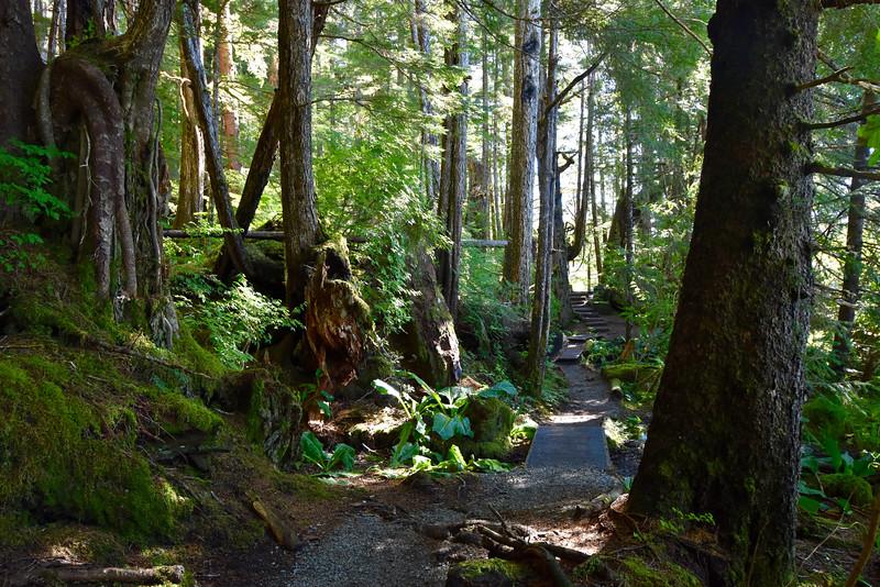 Mosquito Cove Trail, Sitka, AK, USA