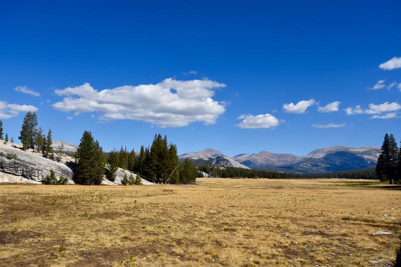 Tioga Road, Yosemite, CA, USA
